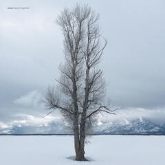 Keep It Together