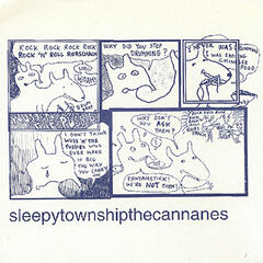 The Cannanes / Sleepy Township Split
