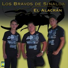 Alacrán album art
