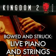 Bowed & Struck: Live Piano and Strings album art