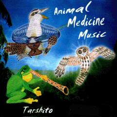 Animal Medicine Music album art