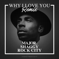 Why I Love You (Remix) [feat. Shaggy & Rock City] album art