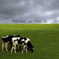 Pasture In Kahaluu album art