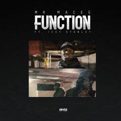 Function album art