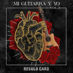 Mi Guitarra y Yo, Vol. 3 album art