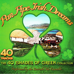 Panpipe Irish Dreams