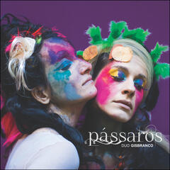 Pássaros album art