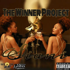 The Winner Project album art