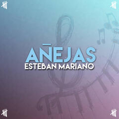 Añejas album art