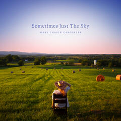 Sometimes Just the Sky album art