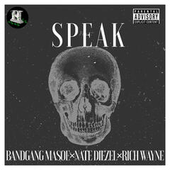 Speak album art