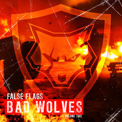 False Flags Volume Two album art