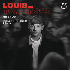 Miss You (Luca Schreiner Remix) album art