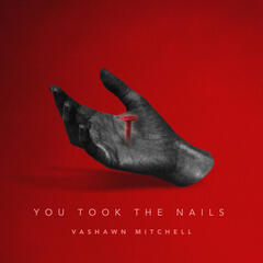 You Took the Nails (Radio Edit)