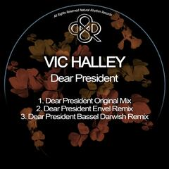 Dear President album art