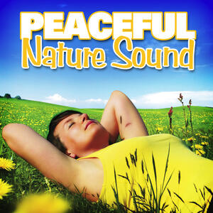 nature sounds for sleep and relaxation radio listen to free music get the latest info. Black Bedroom Furniture Sets. Home Design Ideas